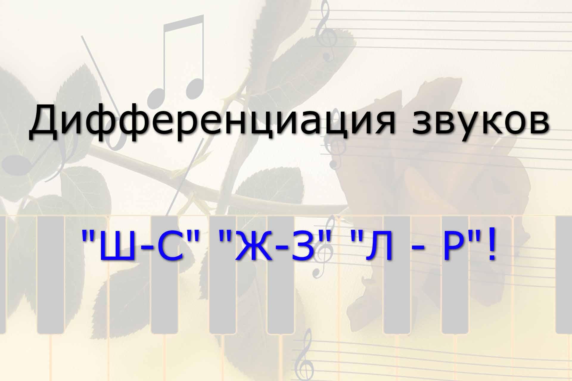 Вебинар по диференциации звуков Ш С Ж З Л Р
